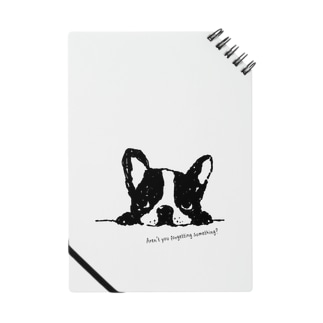 French Bulldog01 UP Notes