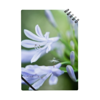 Angel of Agapanthus 170702 Notebook
