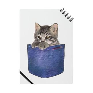 デニムポケットからひょっこり子猫ちゃん Notes