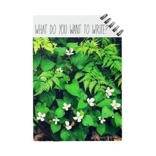 なに書きたい?(植物Ⅰ) Notes