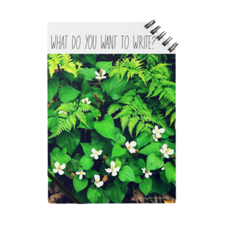 おかざきめぐみのなに書きたい?(植物Ⅰ) Notes