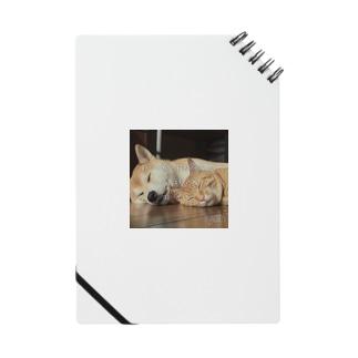 命の大切さ Notebook