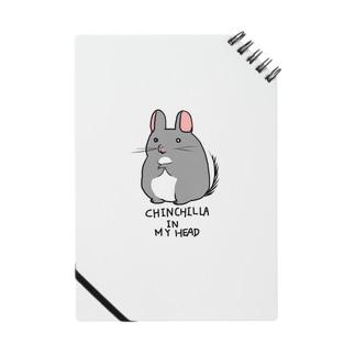 CHINCHILLA IN MY HEAD... Notes