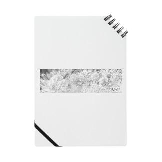 白銀の華 Notes