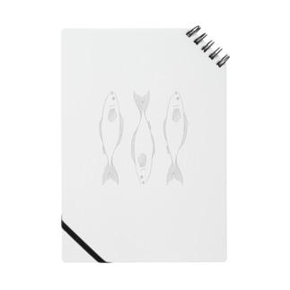 魚3 Notes