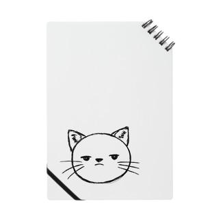 スン猫 Notes