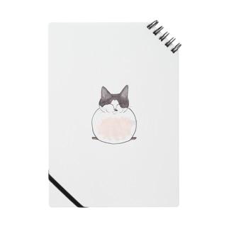 花びら餅猫 Notes