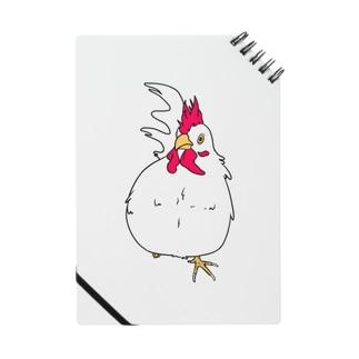 かわいい鳥類!! Notes