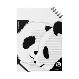 PANDA COMPLEX パンダ頭複合体 Notes