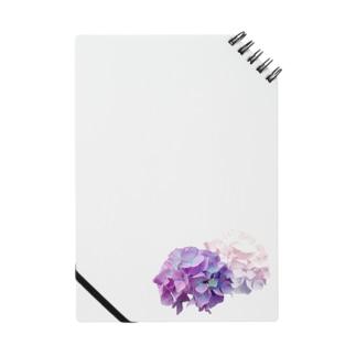 むらさき紫陽花 Notes