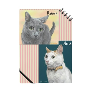 Ramu & Noa Notes