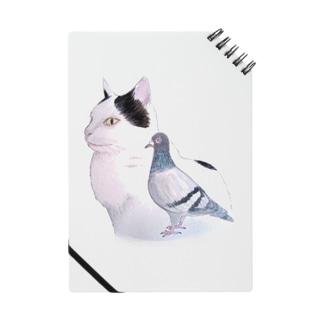 猫とハト Notes