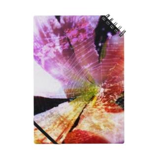花と蜘蛛 Notes