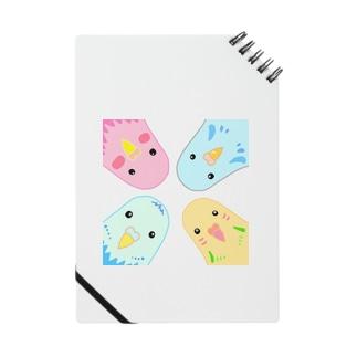 インコのイラスト Notes