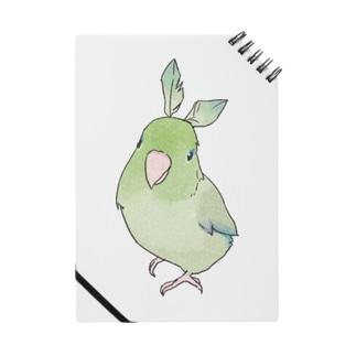 お羽飾り マメルリハちゃん【まめるりはことり】 Notes