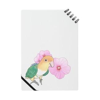 お花とシロハラインコちゃん【まめるりはことり】 Notes