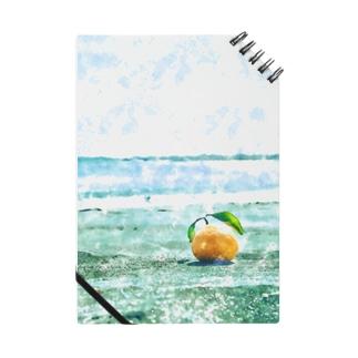 海辺のオレンジ Notes