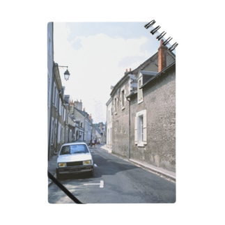 フランス:ブロワの風景 France: view of Blois Notes