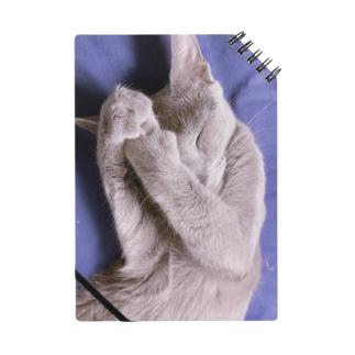 うちの猫スケブ Notes