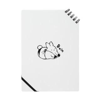 Boinうさぱい Notes