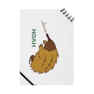 ハリモグラ Notes