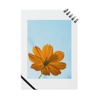 FLOWER NOTE Notes