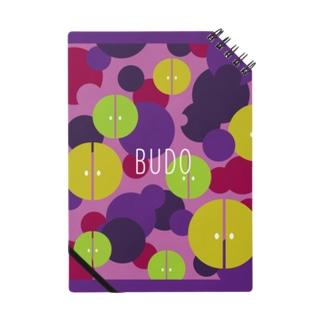 BUDO Notes
