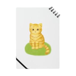 Marmalade cat ノート