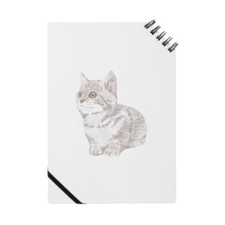 色鉛筆風の猫 Notes