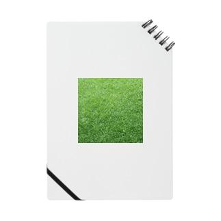 GRASS-芝 Notes