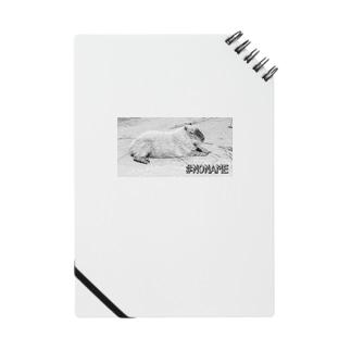 #NONAME Series 02 -Capybara Notes