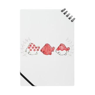 ピンポンパール Notes