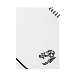ティラノサウルス 頭骨 Notes
