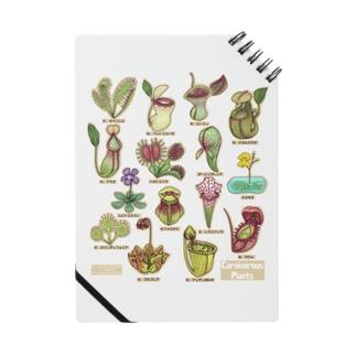 食虫植物図鑑 Notes