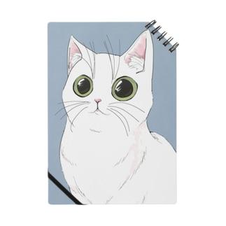 NEKO-CYAN☆ Notes