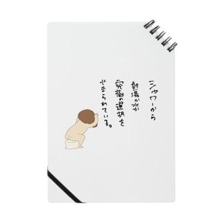 シャワーの不調 Notes