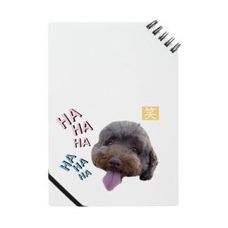笑う犬3 Notes