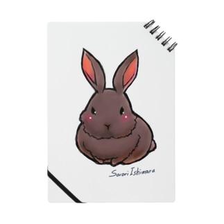 不思議野ウサギ Notes