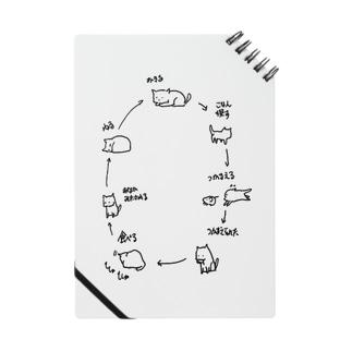 自然の摂理 Notes