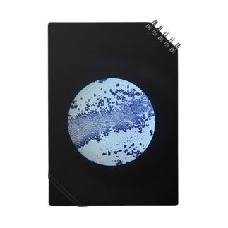 新惑星 Notes