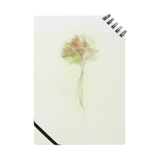 Coast Flower Notes