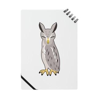 アフリカオオコノハズク非常時 ノート