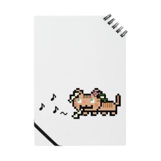 角笛猫2D-1 Notes