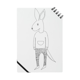 My  friends kangaroo Notes
