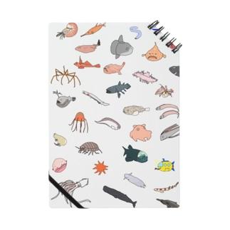 深海生物の世界 Notebook