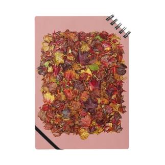 「秋のぽぉけっと。」AZNB01 Notes