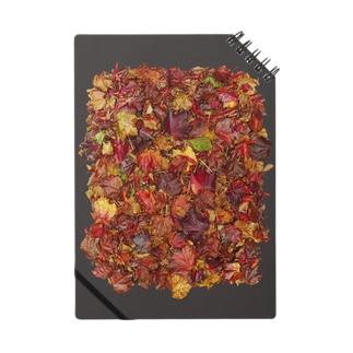 「秋のぽぉけっと。」AZNB05 Notes