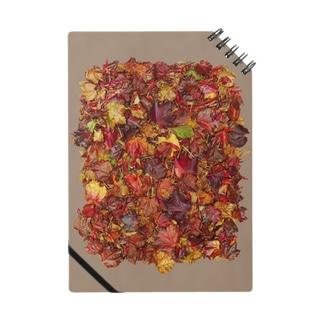 「秋のぽぉけっと。」AZNB06 Notes