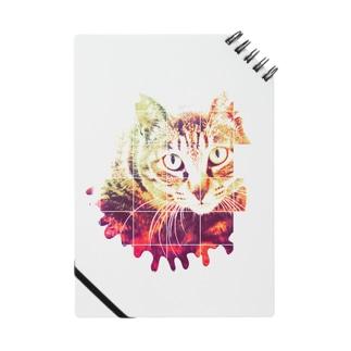 日曜猫 Notes