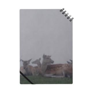 Fog and deer II Notes